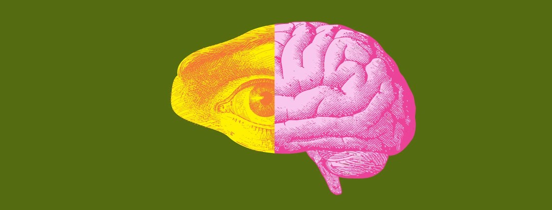 An illustration of and eyeball and a brain coming together to make a new brain shape together.