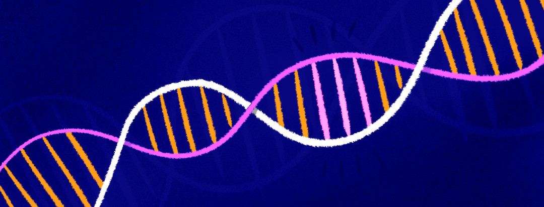 A segment of a DNA strand is highlighted.