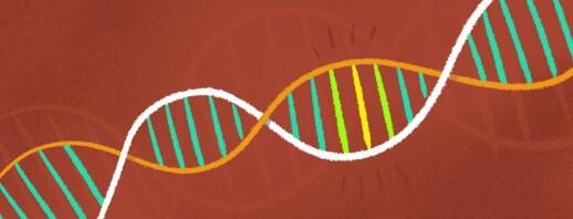 Genetics, Epigenetics, and Cures for Macular Degeneration image